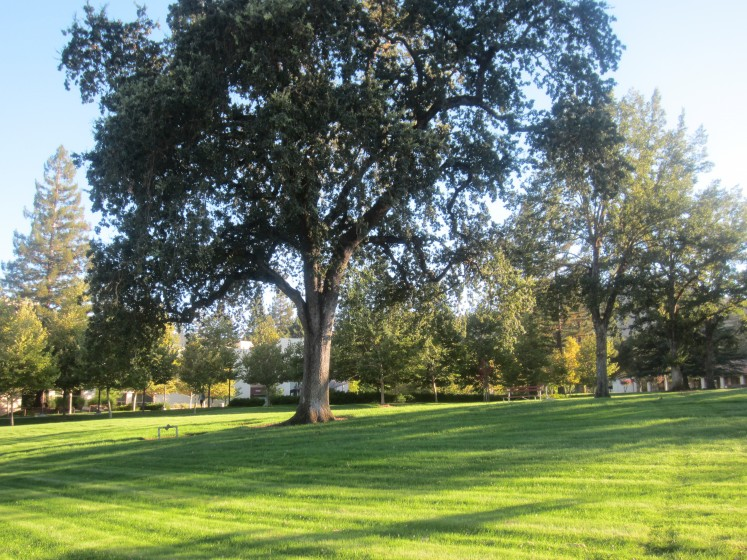 Veterans Home of California, Yountville