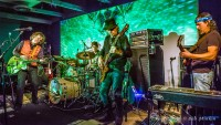 Moonalice in Monterey Herald